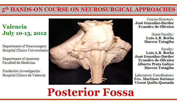 neurocirugia-2012